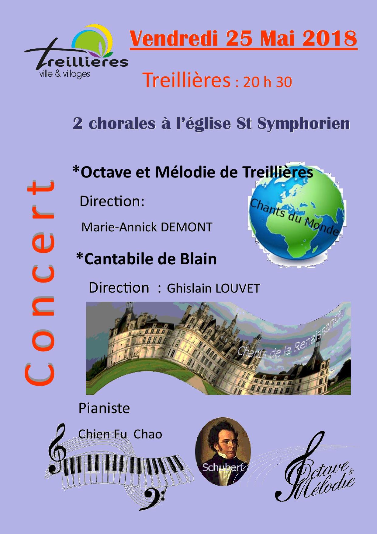 Affiche du concert diffusion internet a treill2018